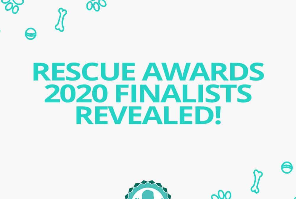 Jetpets Companion Animal Rescue Awards 2020 FINALISTS revealed