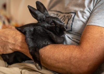 Jo Lyons Photography-Bunny and Man